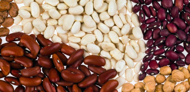 Beans in a pre-bariatric surgery diet