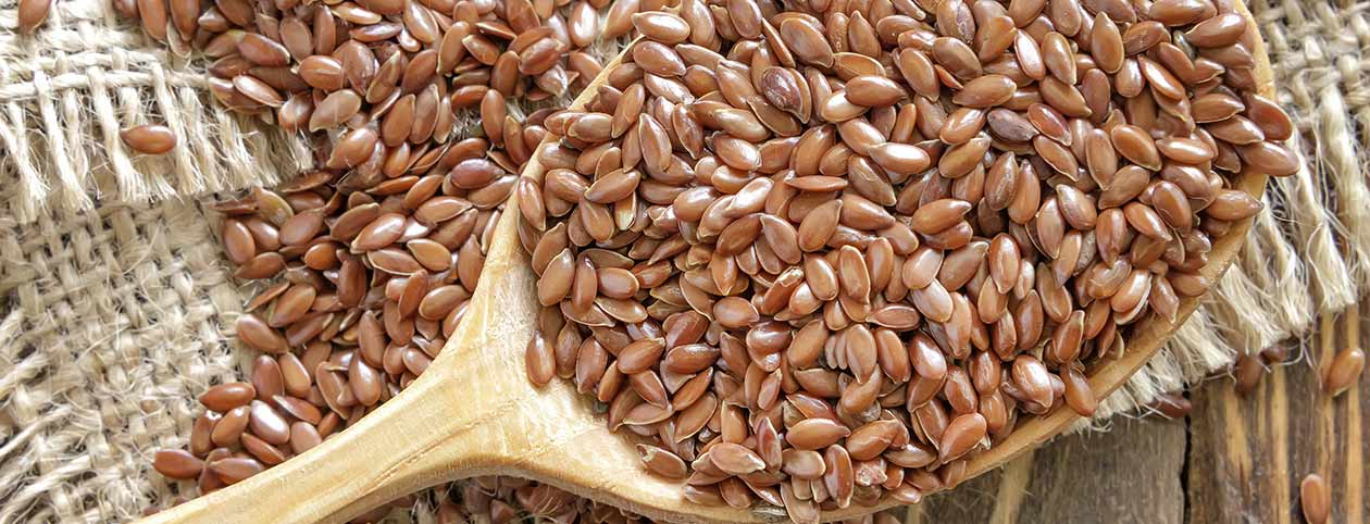 Benefits of Flax Seed Superfood for Lowering Cholesterol