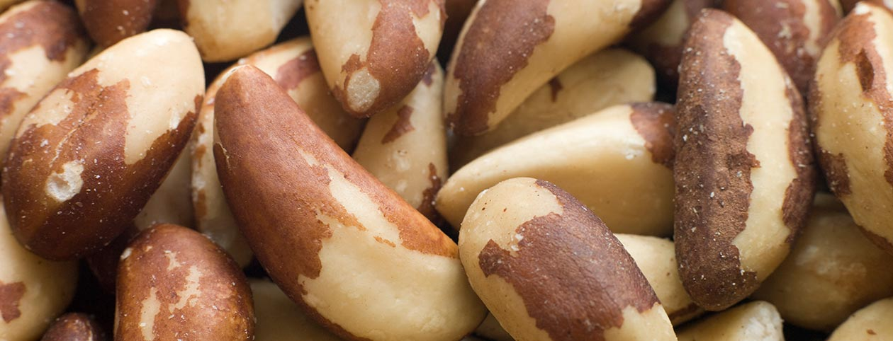 Brazil Nuts Nutrition Superfood