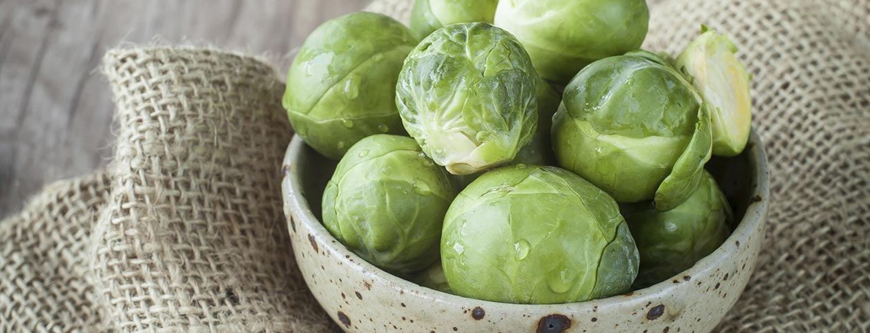 Health Benefits of Brussels Sprouts Superfood for Weight Loss