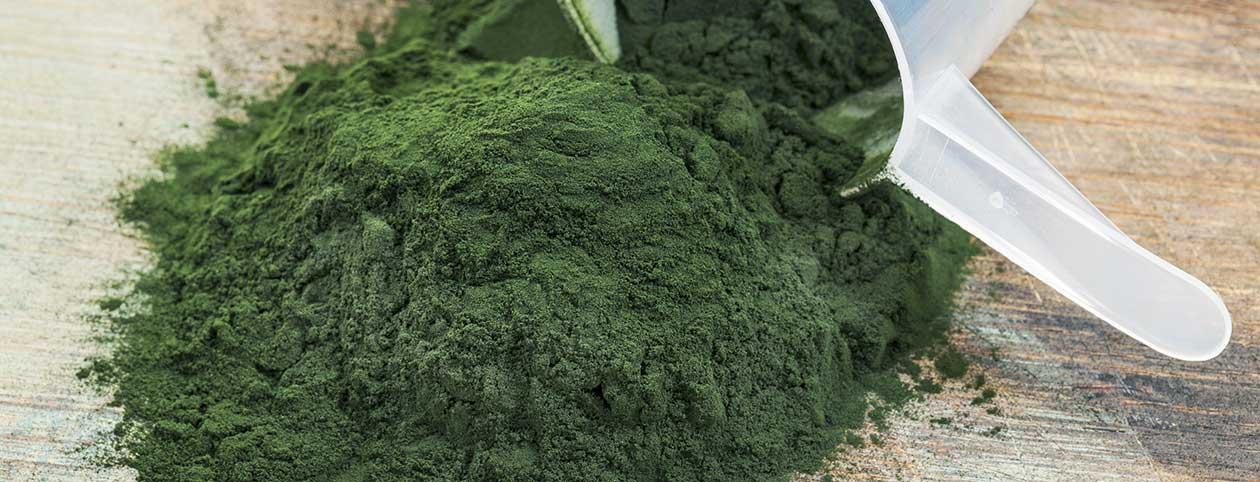 Spirulina health benefits one of top superfoods