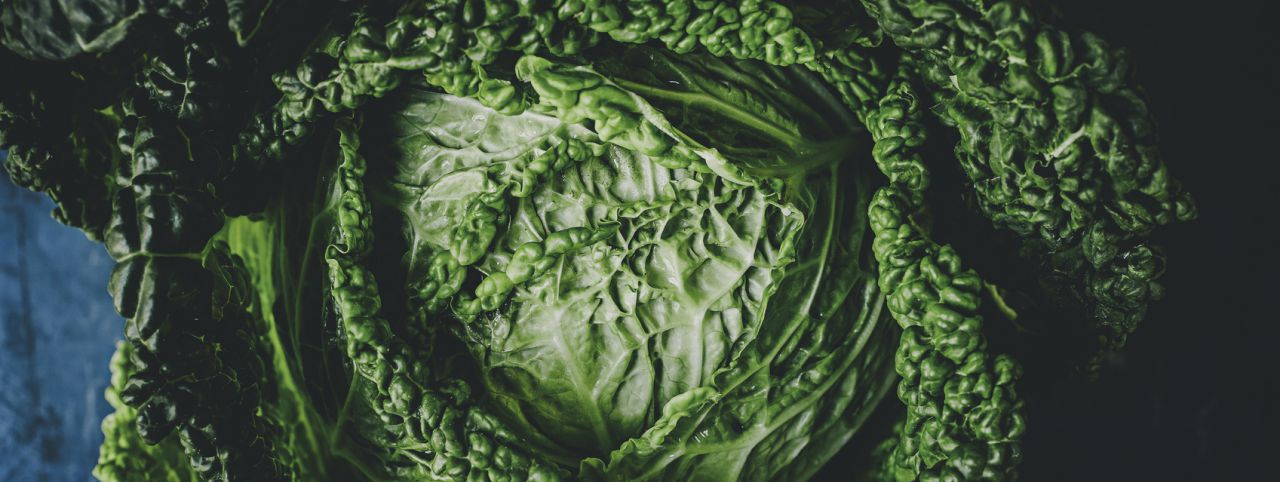 Fresh cabbage that's great in a high fiber diet for weight loss