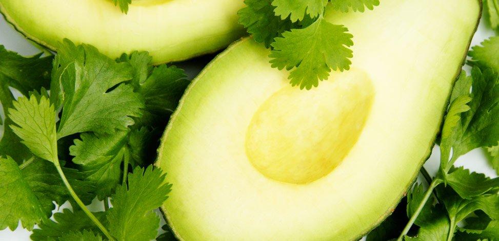 health-benefits-of-cilantro-guacamole-avocado