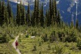 Woman hiking on Whistler Fitness Vacations